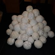 100 Droge Sneeuwballen – 1